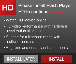 fake flash player